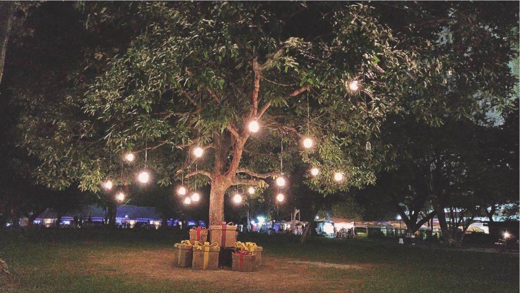 impressie grote boom met verlichting